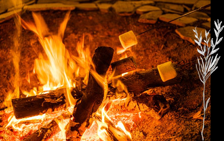 焚き火の炎で焼きマシュマロ